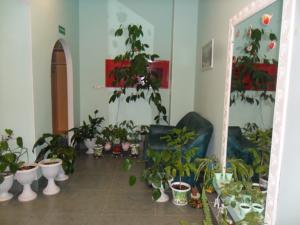 Новое помещение стоматологической клиники Жемчужина Тамбов